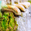 Brass fountain water source spring with green moss...