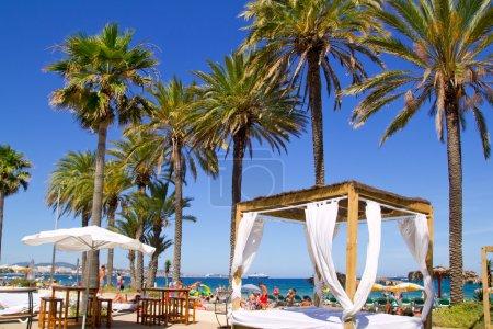 Ibiza Platja En bossa beach with palm trees