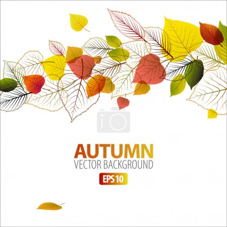 Illustration for Vector Autumn abstract floral background with place for your text - Royalty Free Image