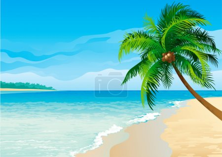 Illustration for Vector illustration of coconut palm tree on tropical beach - Horizontal format. - Royalty Free Image