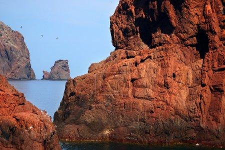 CORSICA CALVI Bay of Calvi