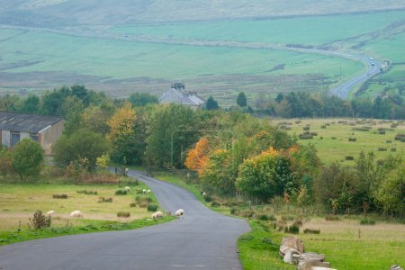 Photo for Countryside landscape near Buxton, Derbishire, Peak District - Royalty Free Image