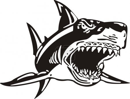 Black and white image of an attacking shark...