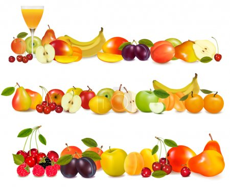 Illustration for Three fruit design borders isolated on white. Vector. - Royalty Free Image