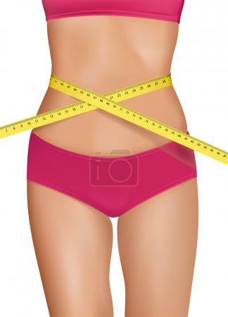 Fit young woman body with measured waistline. Concept of diet. Vector.