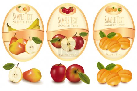 Illustration for Three labels with different sorts of fruit. Vector. - Royalty Free Image