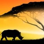 Illustration of an african landscape of fantasy, w...