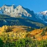 A beautiful scenic of Mount Sneffel at the peak of autumn, Ridgeway,Colorado