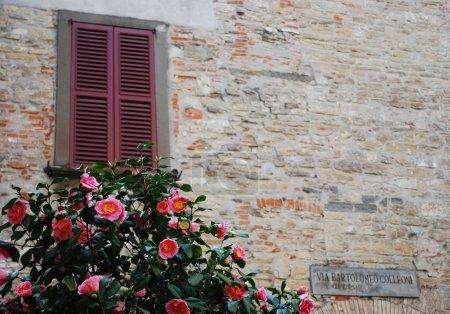 Stone wall and window