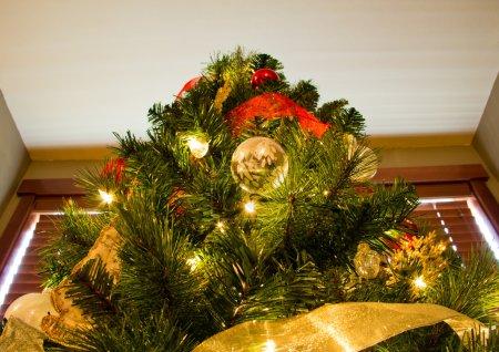 Looking Up to Peak of Christmas Tree