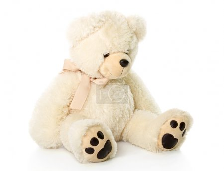 Photo for Teddy bear. Isolated on a white background - Royalty Free Image