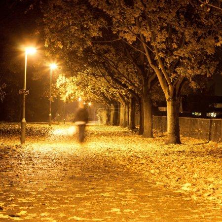 Chemin la nuit