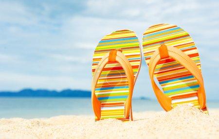 Beach sandals on the sandy sea coast