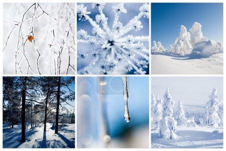Photo pour Collage d'hiver de Finlande avec de beaux détails - image libre de droit