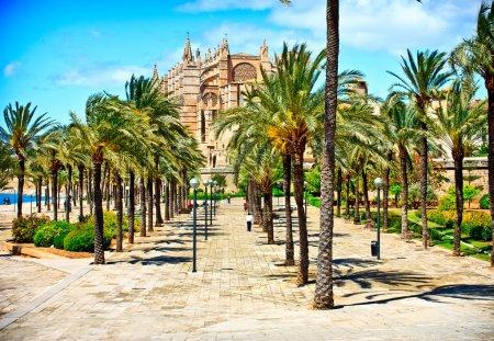 Photo pour Cathédrale de la seu Majorque à palma de Majorque. Îles Baléares - image libre de droit