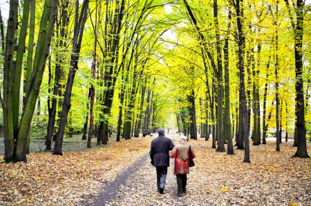 Photo pour Couple aîné dans le parc - image libre de droit
