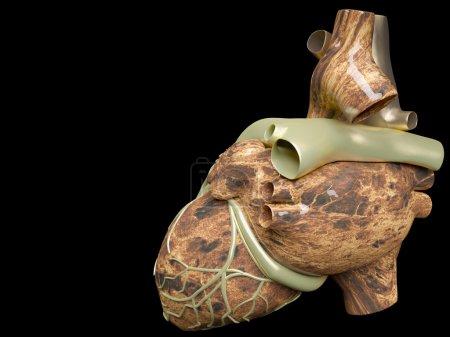 Photo pour Modèle du cœur humain artificiel - image libre de droit
