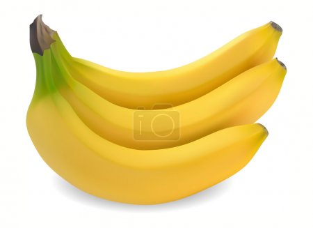 Illustration for Ripe bananas on a white background vector - Royalty Free Image