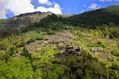Nature and landscapes of the Ribeira Sacra, Orense, Galicia, Spain