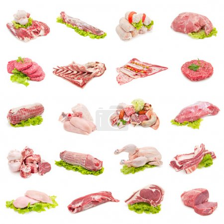 Photo for Collection of fresh beef, veal, poultry and pork on white background - Royalty Free Image