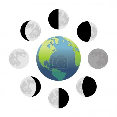 Illustration for Moon phases - Royalty Free Image