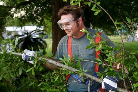 Photo pour Un travailleur dans l'équipement de sécurité, dégagement de branches et débris de hurrican. - image libre de droit