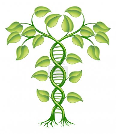 Illustration for DNA plant concept, can refer to alternative medicine, crop gene modification. - Royalty Free Image