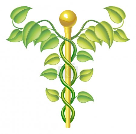 Illustration for Natural caduceus concept, can be used for natural or alternative medicine etc. - Royalty Free Image