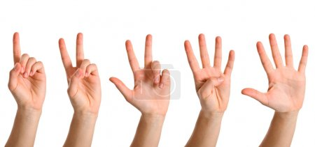 Photo for Hands counting to five. Isolated on white. - Royalty Free Image