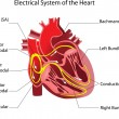 The device is the human heart. Poster...