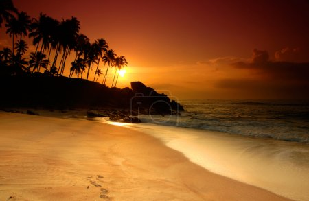 Photo for Beautiful colorful sunset over sea and boulders seen under the palms on Sri Lanka - Royalty Free Image