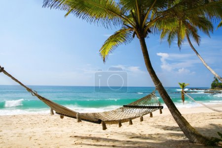 Photo for Romantic cozy hammock in the shadow of the palm on the tropical beach by the sea - Royalty Free Image