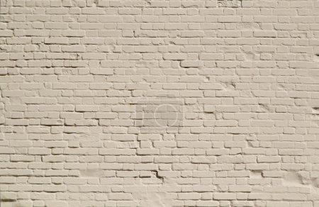 Photo pour Mur de briques blanches - image libre de droit