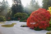 Sluneční paprsky v japonské ploché písku zen garden