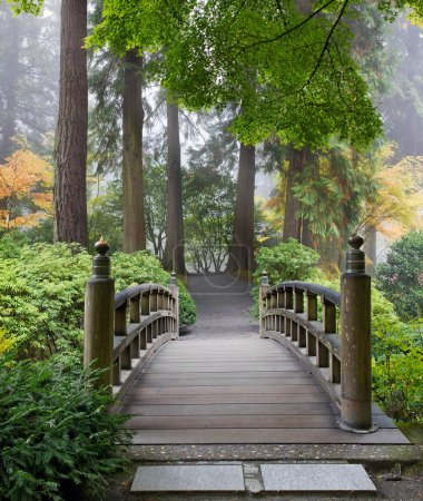 Photo for Foggy Morning by Wooden Foot Bridge at Japanese Garden in Autumn - Royalty Free Image