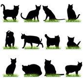 12 Cat Silhouettes Set