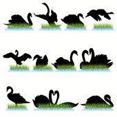 12 Swans Silhouettes Set