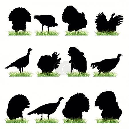 Illustration pour 12 silhouettes Turquie ensemble - image libre de droit