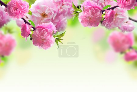Photo for Abstract Pink Flower Design - Royalty Free Image