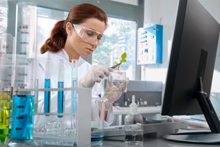 Scientist working at the laboratory