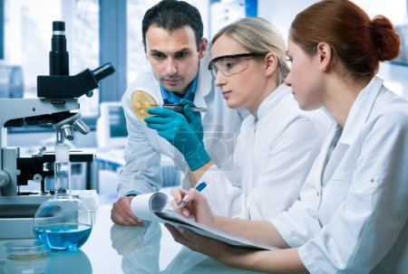Photo for Group of students working at the laboratory - Royalty Free Image