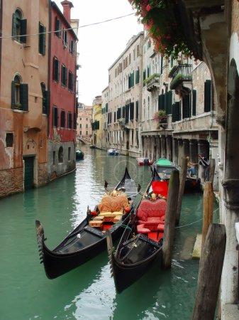 Gondolas from Venice, Italy