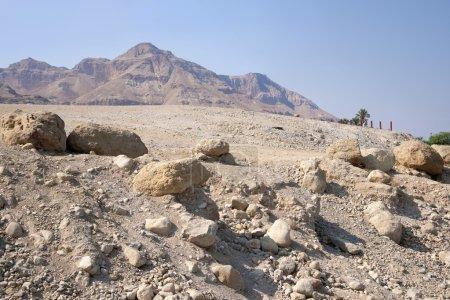 Desert near the shore of the Dead Sea