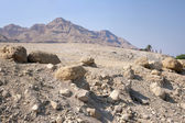 Desert near the shore of the Dead Sea
