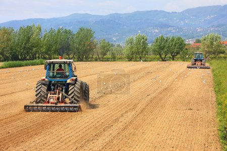 Two tractors farming in field