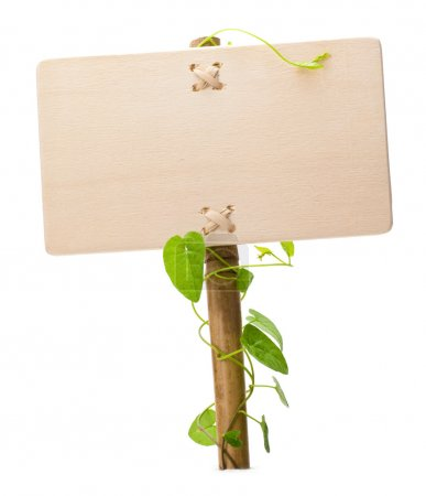 Photo for Empty sign for message on a wooden panel and green plant - image is isolated on a white background - Royalty Free Image