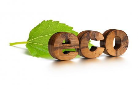 Photo for 3D wooden eco word and green leaf over a white background - Royalty Free Image