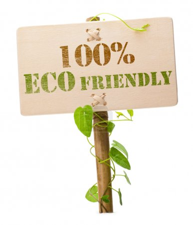 Foto de Eco friendly sign message on a wooden panel and green plant - image is isolated on a white background - Imagen libre de derechos
