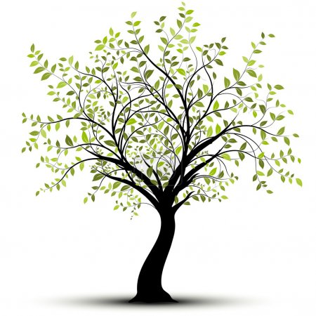 Illustration for Green vector tree over white background - Royalty Free Image