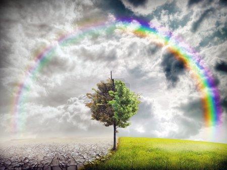 Photo pour Paysage écologique - image libre de droit